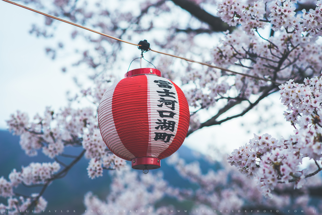 Facebook Japan Travel Guide Book